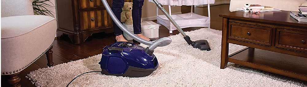 The 25 Best Canister Vacuums