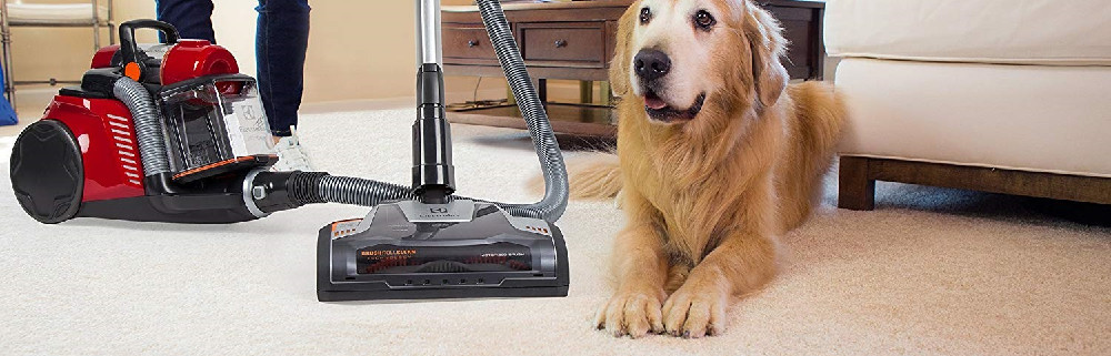 The 7 Best Canister Vacuums to Buy