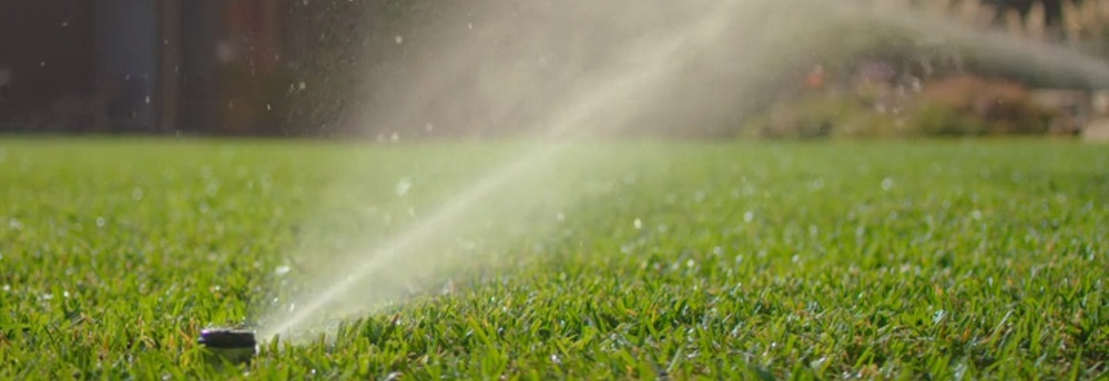 Best Smart Irrigation Systems