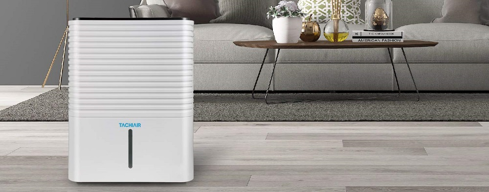 What is the best dehumidifier?