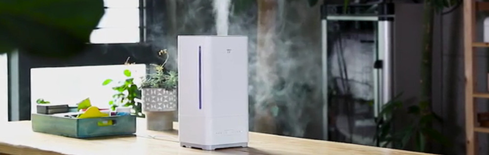 What is the best humidifier?