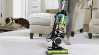Best Upright Vacuums for Pet Hair