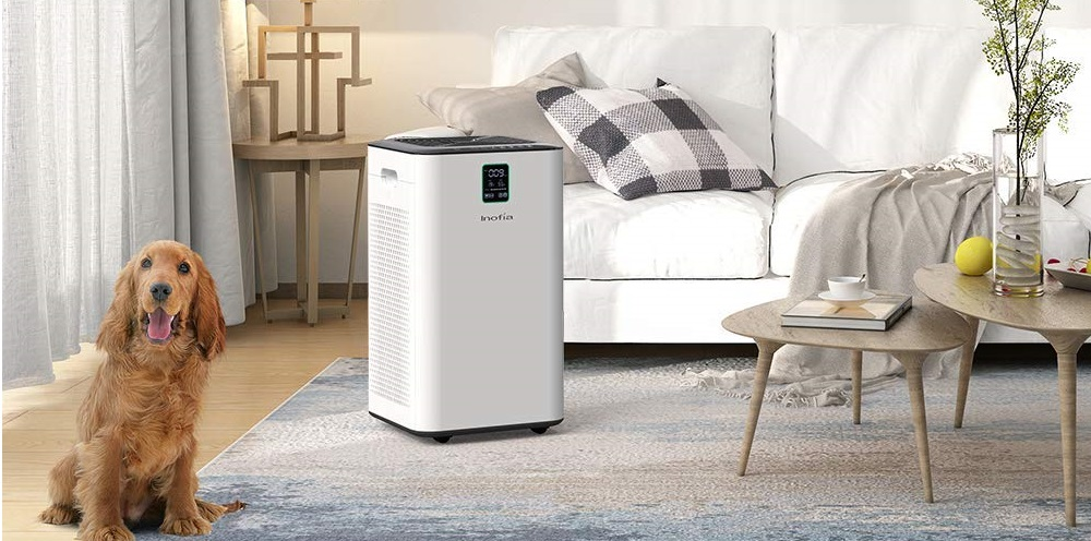 Inofia Air Purifier with True HEPA Air Filter Review