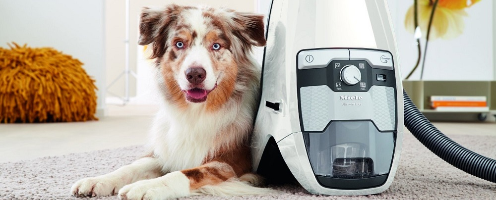 Miele Blizzard CX1 Cat & Dog Bagless Canister Vacuum Review