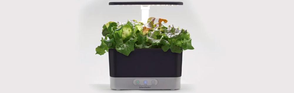 AeroGarden vs. Click and Grow Smart Garden