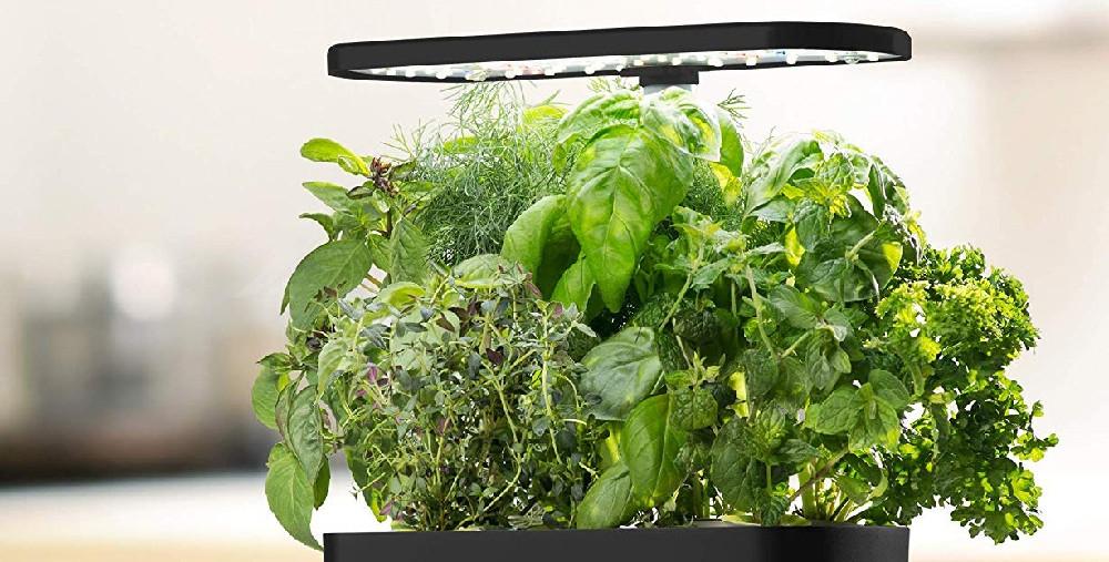 AeroGarden Smart Garden