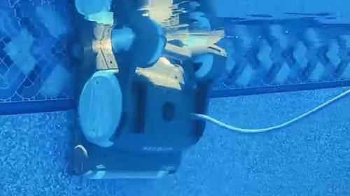 Aquabot vs. Dolphin