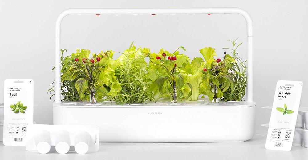 Click and Grow vs. AeroGarden Smart Garden