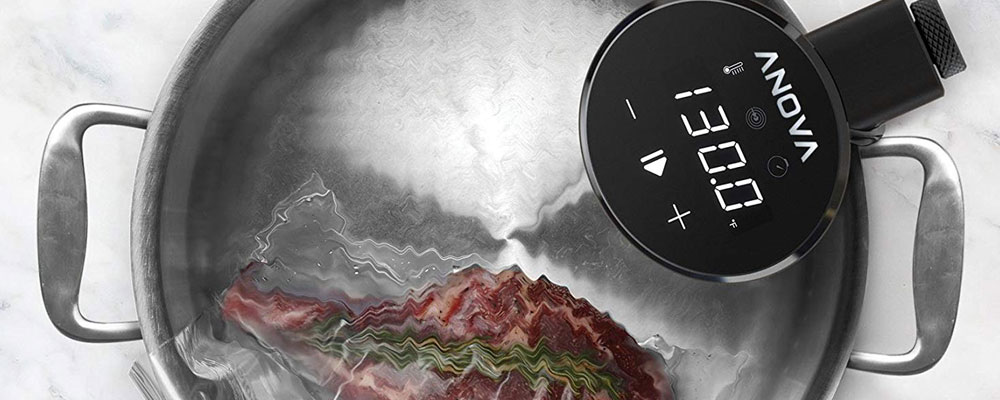 Anova Culinary Sous Vide Precision Cooker Nano Review