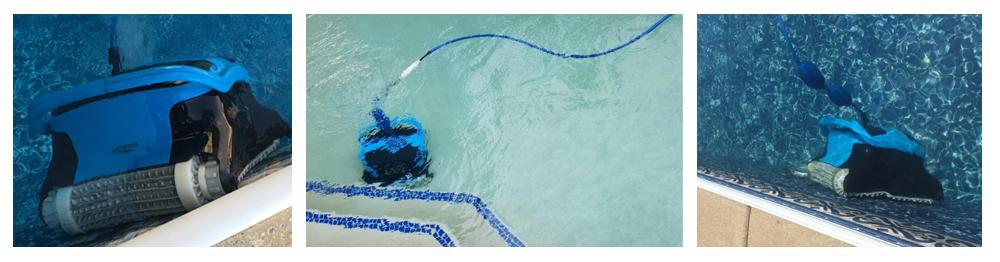 PAXCESS vs. Dolphin Nautilus CC Plus Automatic Robotic Pool Cleaner