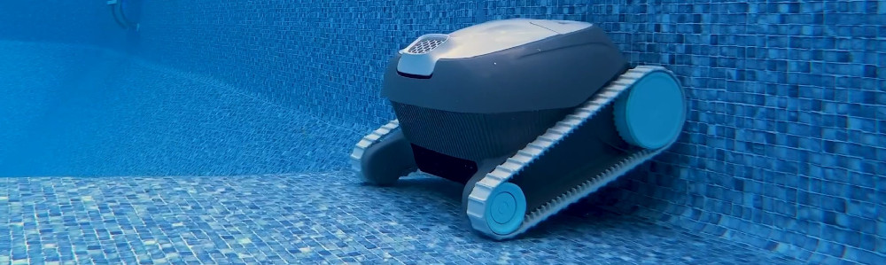 Dolphin Advantage Automatic Robotic Swimming Pool Cleaner