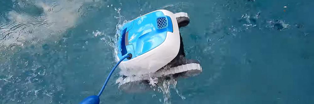 Dolphin Proteus DX3