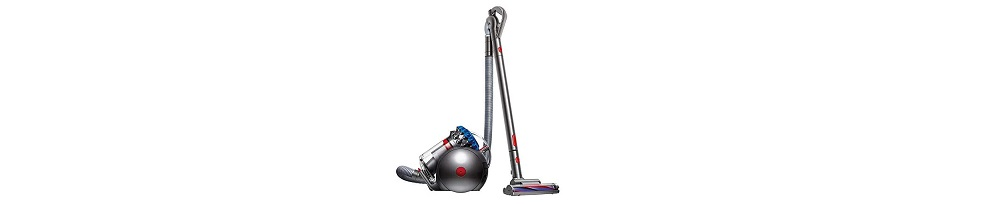 Dyson Big Ball Animal+ Canister Vacuum Cleaner Review