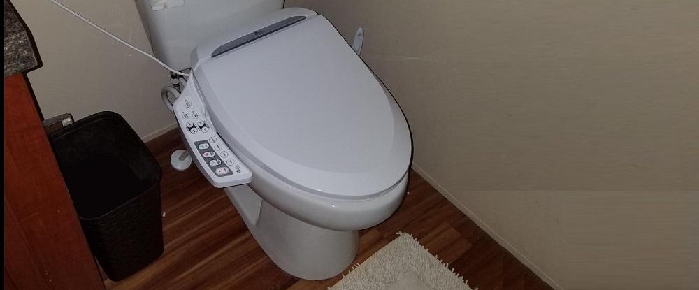 Bio Bidet BB-600 Ultimate Bidet Toilet Seat