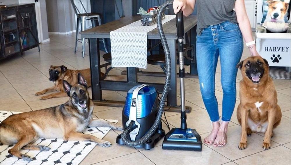 Sirena Bagless Vacuum