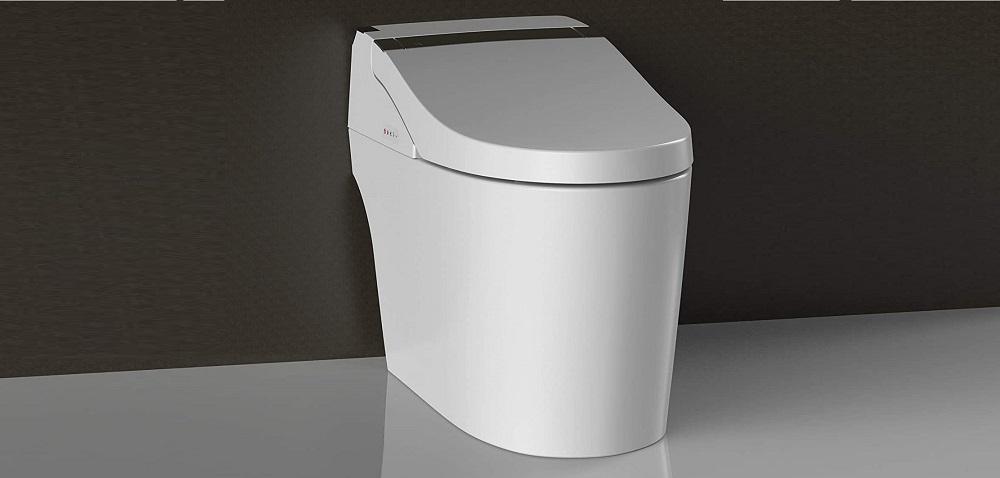 WOODBRIDGE B0960S White Elongated Toilet Review
