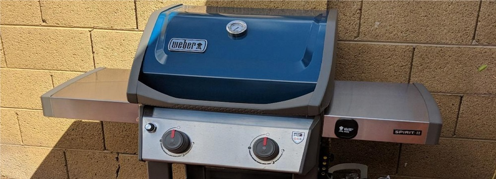 Weber 44010001 Spirit II E-210 2-Burner Liquid Propane Grill, Black Review
