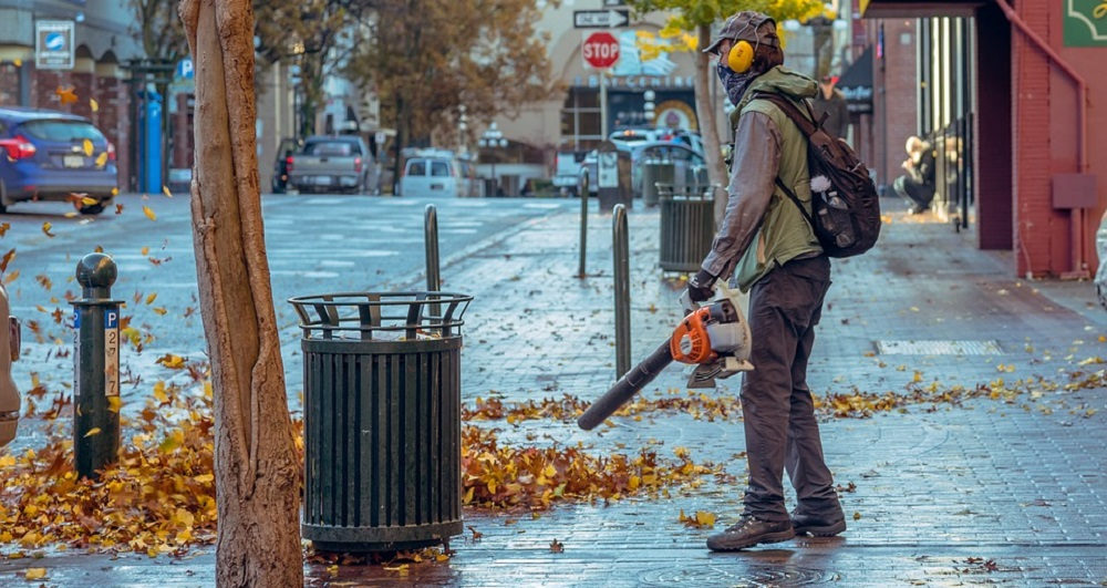 Different Types of Leaf Blowers