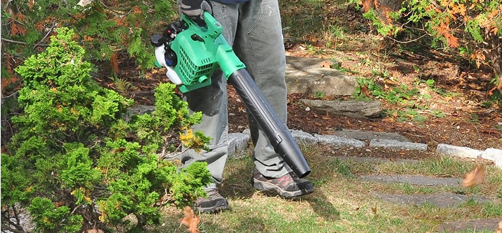 Best Gas-Powered Leaf Blowers
