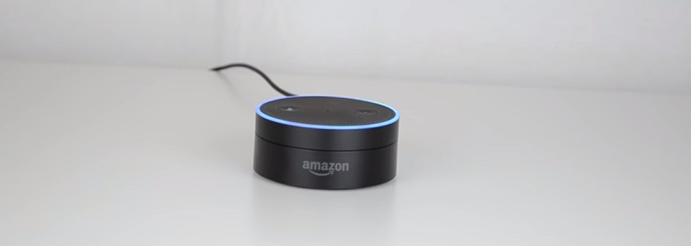 Echo dot 1st generation