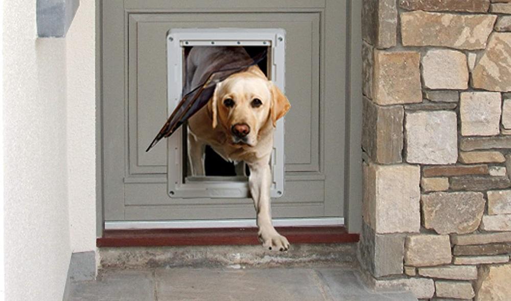 Smart Dog Door