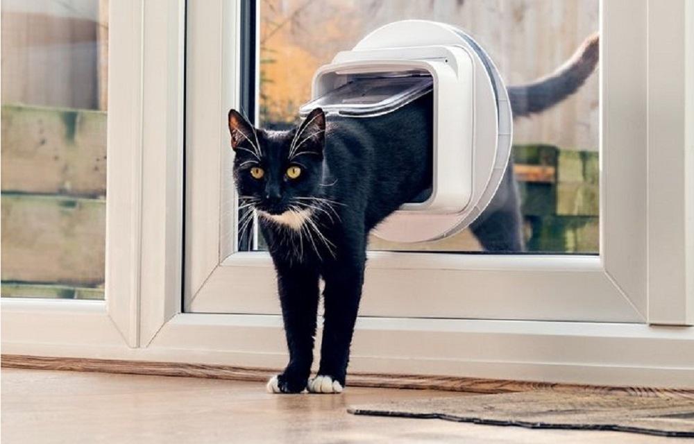 Smart Cat Door