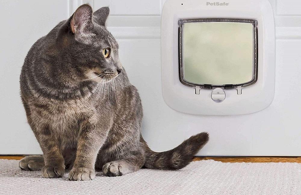 Wifi Cat Door